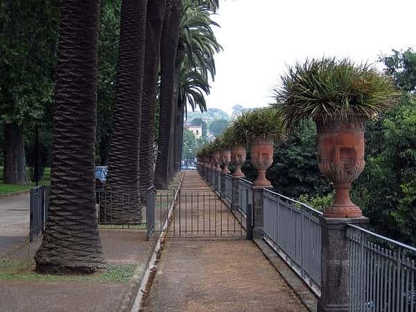 Насколько большой Ботанический сад Неаполя